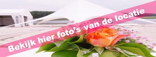 fotosweb.jpg